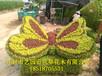 园林动植物雕塑