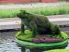 五色草造型五色草雕塑