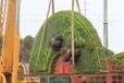 五色草扇子造型