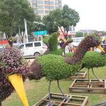 五色草仙鹤造型