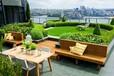 山东培根园林屋顶绿化