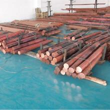 杭州供应优质H96黄铜规格齐全可定做特殊规格