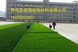外观鲜艳环保10-70mm草高人造草坪厂家