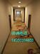 青岛走廊地毯、青岛祥云印花走廊地毯、青岛酒店地毯