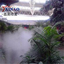 广州户外喷雾造景系统旅游景区喷雾造景系统别墅冷雾造景系统图片
