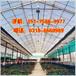 张家口市采光板专业生产厂家,高端frp采光板,透明采光板价格