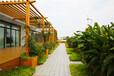 供应免维护木塑花架木塑廊架休闲实木廊架可加工定制