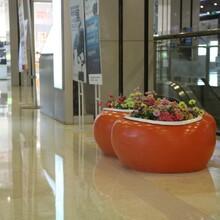 供应玻璃钢花钵,玻璃钢花盆,厂家直销,价格实惠图片