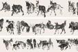 大中国画院全球营运中心长期收购字画