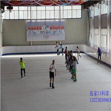 仿真溜冰板仿真滑冰板人造滑冰场图片