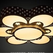 厂家直销异形LED吸顶灯欧式现代客厅卧室灯温馨书房灯批发