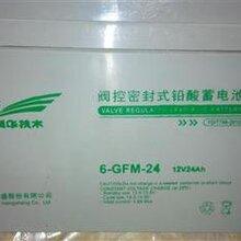 广州汤浅蓄电池的报价图片