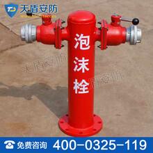 地上式泡沫消防栓