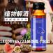 植物解酒饮/玉米解酒饮odm加工定制厂