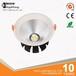 LED照明cob8寸筒灯downlight40W商业筒灯厂家直销型号DLS340