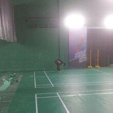 PVC羽毛球运动地板建设-温州体育场地建设报价-强锐体育