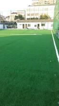 人造草坪足球运动场地建设-温州体育场地建设报价-强锐体育