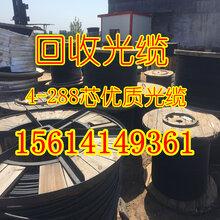美麗的廣東回收光纜廣州回收光纜中心高價回收光纜光纖