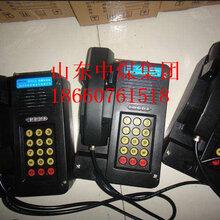 防爆電話本安電話機本質安全自動電話機圖片