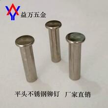 廠家熱銷平頭不銹鋼鉚釘不銹鋼半空心鉚釘304鉚釘圖片