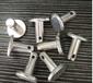廠家加工304不銹鋼銷軸優質T型銷平頭打孔銷機械用
