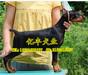 北京纯种杜宾价格哪有美系杜宾出售德系杜宾图片