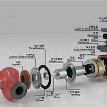 循环泵、屏蔽泵、管道泵、屏蔽电泵简介图片