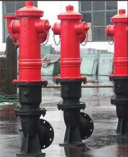 供应SS100地上消火栓室外消火栓