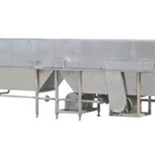 泓源全自动肉丸成型蒸煮冷却流水线∣可定制尺寸长短∣专业加工制造
