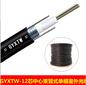 恩瑞智能厂家直销12芯单模室外光缆GYXTW12芯室外光缆中心束管式室外轻铠装光缆