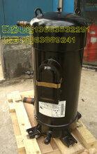 代理C-SDP205H38B三洋制冷压缩机