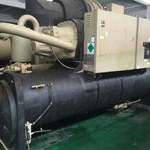 上海瑞年低价出售二手中央空调特灵螺杆机RTHD图片