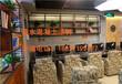 大型网吧清水混凝土涂料装修清水混凝土涂料施工案例效果