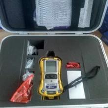 美国华瑞PGM-7340VOC检测仪/TVOC检测仪/ppbRAE3000VOC检测仪图片