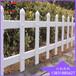 庭院绿化带栅栏现货PVC草坪栅栏生产厂家规格齐全白色绿化带草坪栅栏