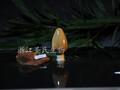 竹叶黄酮图片