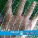我厂专业生产批发防尘网、盖土网、遮阳网