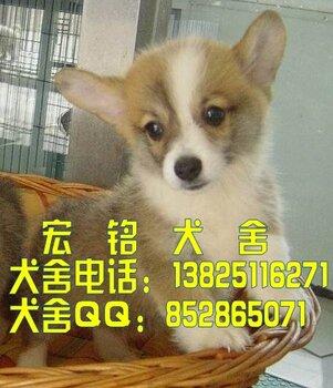 1517345_b_conew1