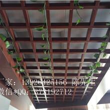 型材格栅铝天花格栅金属吊顶建材