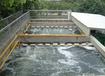 豆制品加工废水处理
