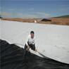 氧化塘土工膜
