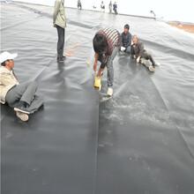 资讯苏州双色HDPE土工膜推荐咨询图片