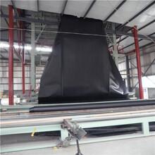 报价朝阳1.5mm毛面HDPE防渗膜报价图片