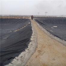 资讯温州养殖HDPE防渗膜信誉保证