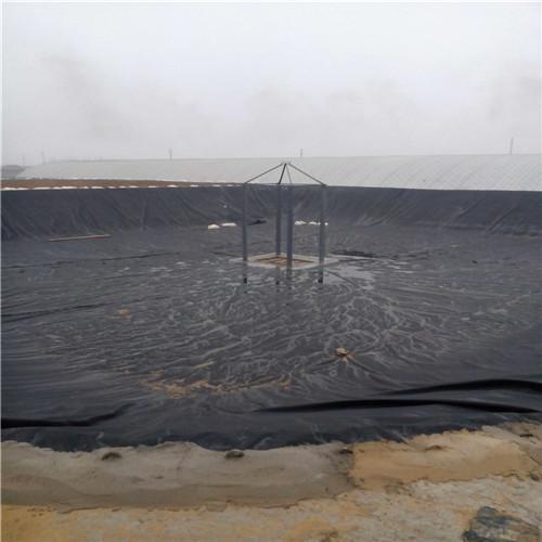 山西陽泉HDPE土工膜國家標準信譽價格
