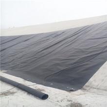报价忻州1.5mmHDPE防渗膜图图片