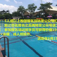 顺德碧桂园国际游泳馆培训班开班啦!