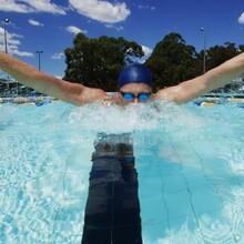 顺德国际游泳馆游泳培训
