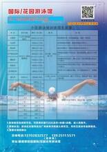 专业的游泳培训机构