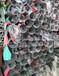 重庆304不锈钢装饰管不锈钢薄壁焊管货架家具制品专供